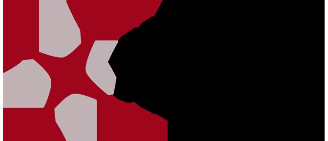 Xsolus logo